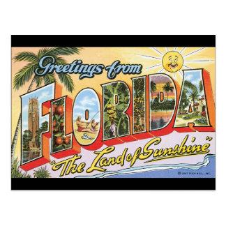 Hälsningar från Florida_Vintage reser affischen Vykort