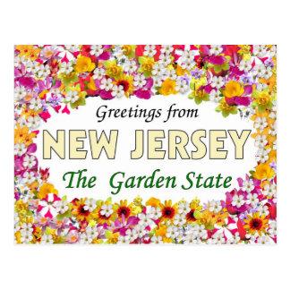 Hälsningar från nytt - jersey vykort