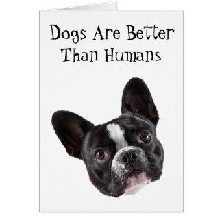 Hälsningkort: Hundar är bättre än människor Hälsningskort