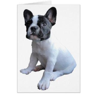 Hälsningkort - min hund hälsningskort