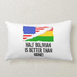 Halvt bolivianskt är bättre än inga lumbarkudde