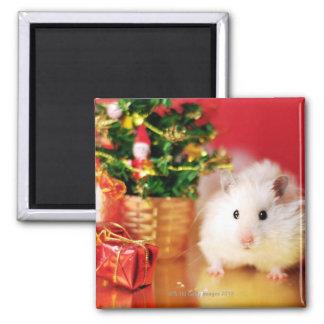 Hamster Kokolinka med julgranen Magnet