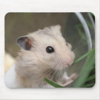 hamstermousepad musmatta