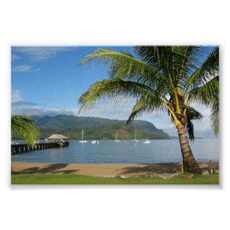 Hanalei fjärd och pir Kauai, Hawaii Poster