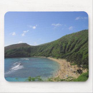 Hanauma fjärd, Hawaii Musmatta