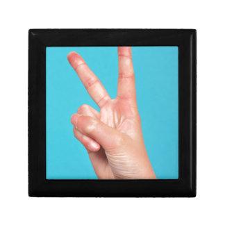 Hand som gör fredssymboler minnesask
