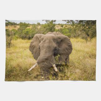 Handduk för elefantälskarematrätt kökshandduk