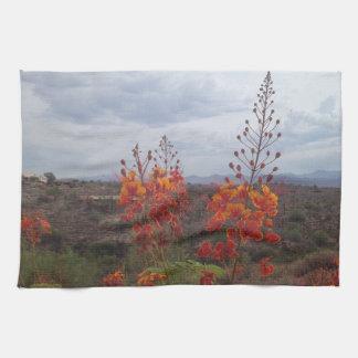 Handduken med öknen beskådar, den mexicanska kökshandduk