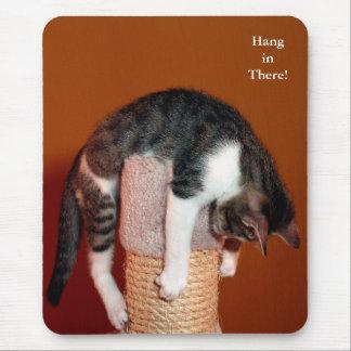 Hängning i den där humoristiska tabby katt musmatta