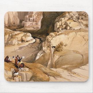 Hänrycka till Petra, mars 10th 1839, plätera 98 fr Musmatta