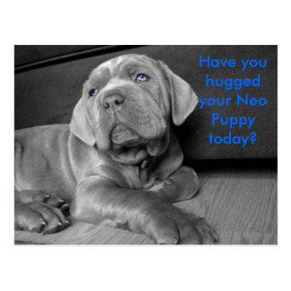 Har du kramat din Neo valp i dag? Vykort