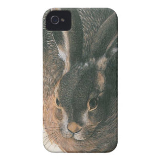 Hare av Albrecht Durer iPhone 4 Case-Mate Skal