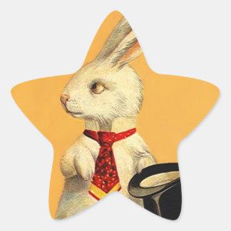Hare för kanin för trick för stjärnformat klistermärke