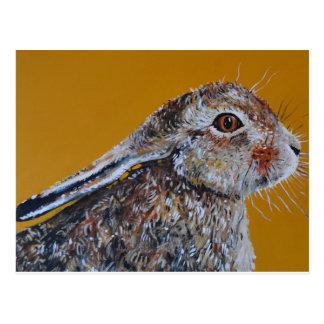 Hare går vi igen vykort