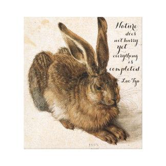 Hare vid Durer med naturcitationstecken 17 x 19 Canvastryck