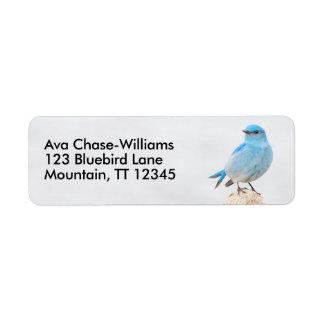 Härlig bergblåsångare returadress etikett