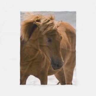 Härlig brun hästullfilt fleecefilt