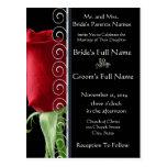 Härlig elegant röd rosbröllopinbjudan vykort