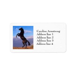 Härlig fostra hästanpassningsbaradressetiketter adressetikett
