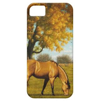 Härlig häst i höst färger räkning för iPhone 5/5S iPhone 5 Case-Mate Fodral