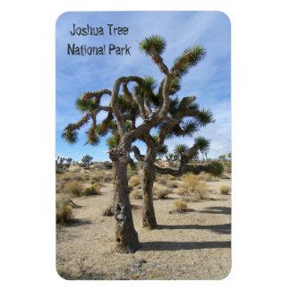 Härlig högvärdig magnet för Joshua träd!