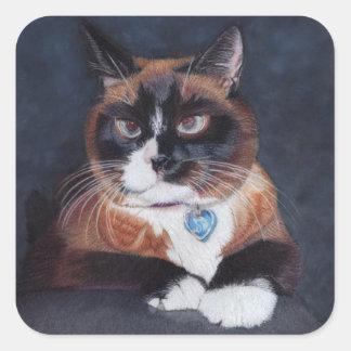 Härlig katt fyrkantigt klistermärke