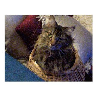 Härlig kattunge för TabbyMaine Coon i en basket Vykort