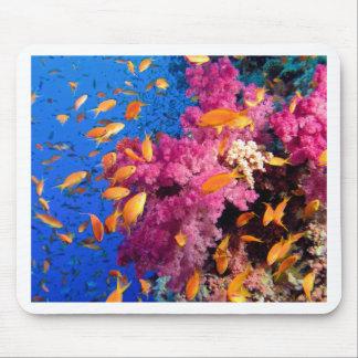 Härlig korallrev Naturescape Musmatta