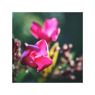 Härlig körsbärsröd blommarkanvastryck canvastryck
