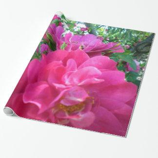 Härlig stor rosa rosroträdgård presentpapper