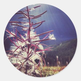 Härlig växt runt klistermärke