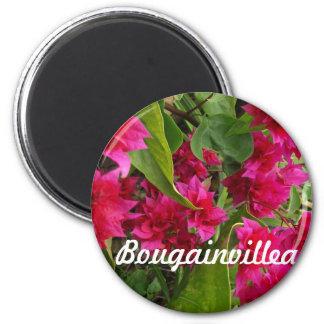 Härliga Bougainvilleagåvor Magnet Rund 5.7 Cm