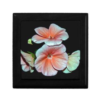 Härliga lite rosa Begonia.jpg Minnesask