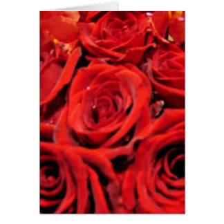 Härliga röd ros hälsningskort