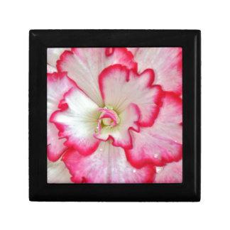 Härliga rosa- och vitbegoniablommar minnesask