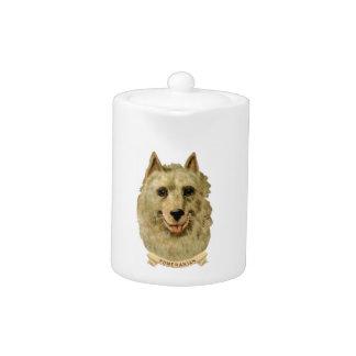 Härligt ansikteporträtt av en Pomeranian hund