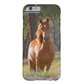 Härligt fodral för hästiPhone 6 för hästälskare Barely There iPhone 6 Fodral