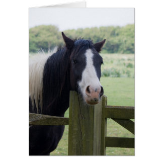 Härligt kort för hälsning för hästhuvudnärbild
