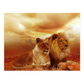 Härligt lejont kopplar ihop vykortet vykort