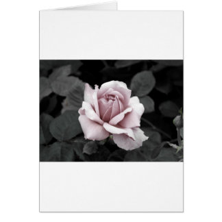 Härligt urblektt rosa rostryck hälsningskort