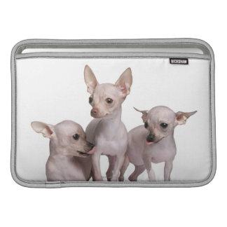 Hårlös Chihuahua (5 och 7 gammala månader) Sleeve För MacBook Air