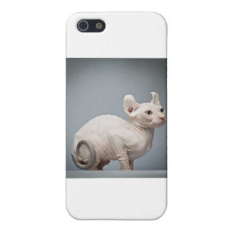 HÅRLÖS KATT iPhone 5 FODRAL