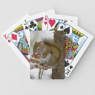 Harriman delstatspark, Idaho. USA. Röd ekorre Spelkort