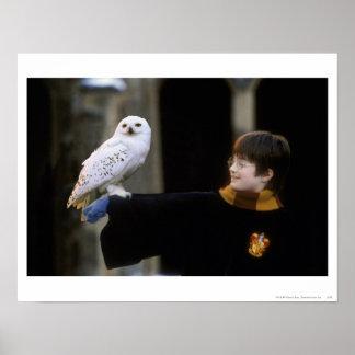 Harry och Hedwig 3 Affisch