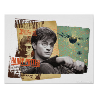 Harry Potter 13 Posters