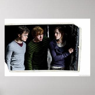 Harry, Ron och Hermione 4 Poster