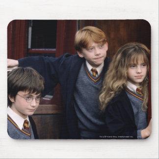 Harry, Ron och Hermione Mus Matta