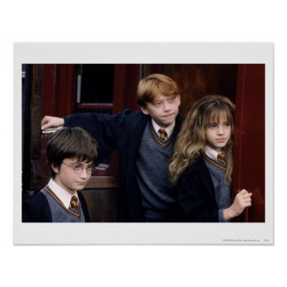 Harry, Ron och Hermione Poster