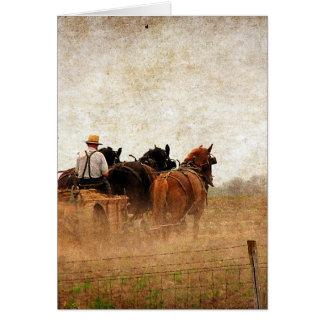 Häst drivit fältarbete hälsningskort