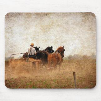 Häst drivit fältarbete musmatta